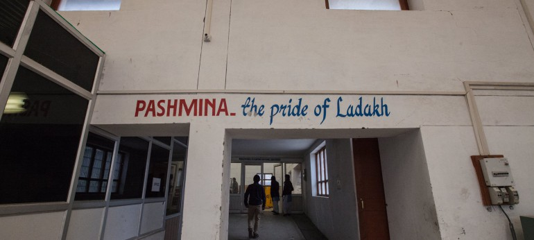 Pashmina - The Pride of Ladakh