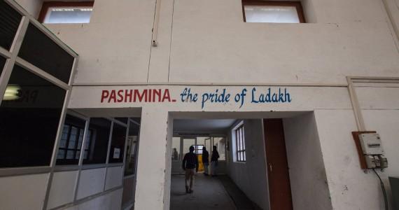 Pashmina - The Pride of Ladakh